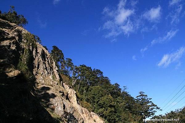 大雪山森林遊樂區 (17)