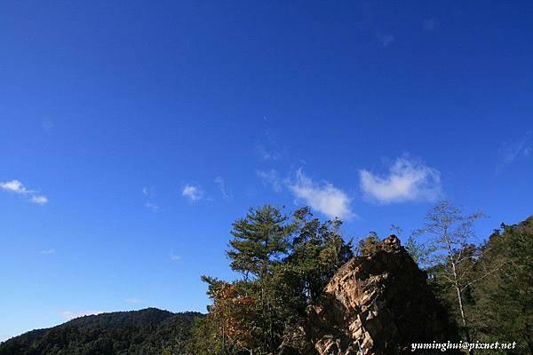 大雪山森林遊樂區 (22)