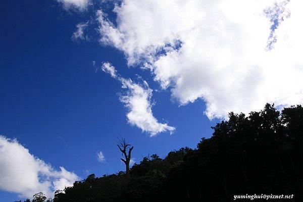 大雪山 (30).jpg