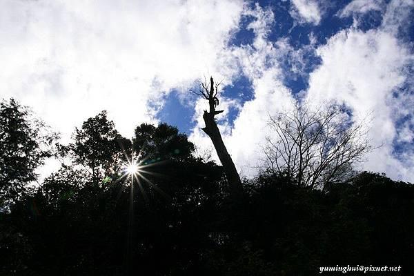 大雪山 (25).jpg