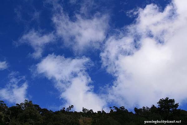 大雪山 (18).jpg