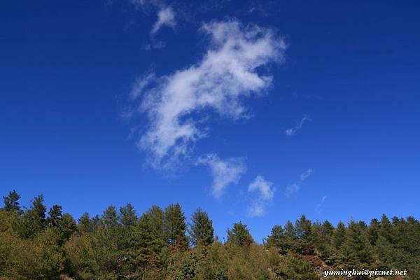 大雪山 (13).jpg