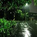 雨夜花 (16).jpg