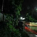 雨夜花 (12).jpg