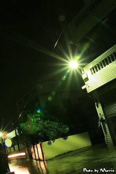 雨夜花.jpg