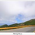 夏日合歡山II (09).jpg