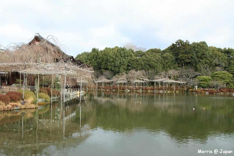平安神宮 (38)