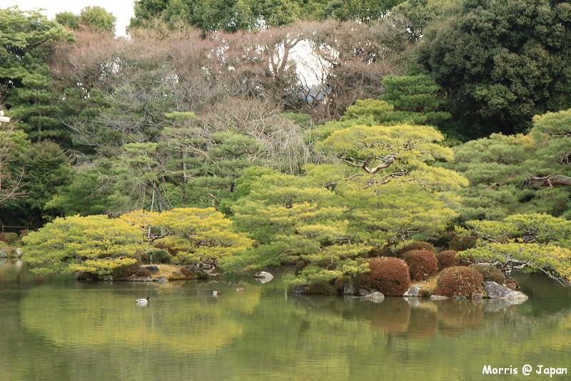 平安神宮 (40)