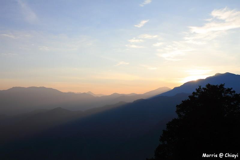 2012阿里山櫻花季 (14)
