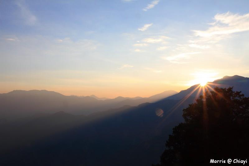 2012阿里山櫻花季 (15)