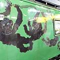 JR 旭山動物園號 (6)