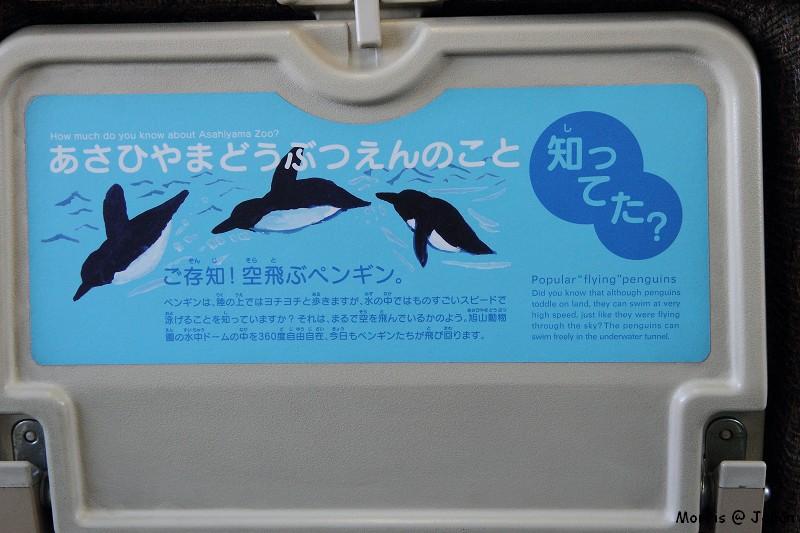 JR 旭山動物園號 (8)