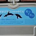 JR 旭山動物園號 (9)