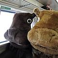 JR 旭山動物園號 (22)