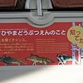 JR 旭山動物園號 (51)