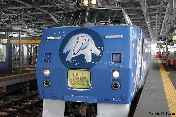 JR 旭山動物園號 (81)