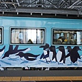 JR 旭山動物園號 (84)