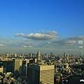 新宿東京都廳 (07).JPG