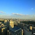 新宿東京都廳 (09).JPG