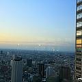 新宿東京都廳 (23).JPG