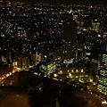 新宿東京都廳 (35).JPG