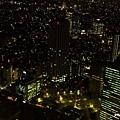 新宿東京都廳 (38).JPG