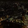 新宿東京都廳 (39).JPG