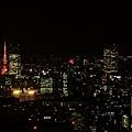 新宿東京都廳 (40).JPG