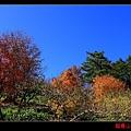 鴛鴦湖 (02).JPG