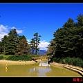 鴛鴦湖 (03).JPG