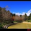 鴛鴦湖 (05).JPG