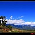 鴛鴦湖 (06).JPG