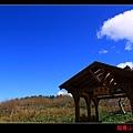 鴛鴦湖 (07).JPG