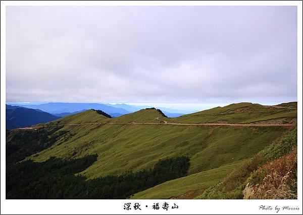 上山途中 (1).JPG