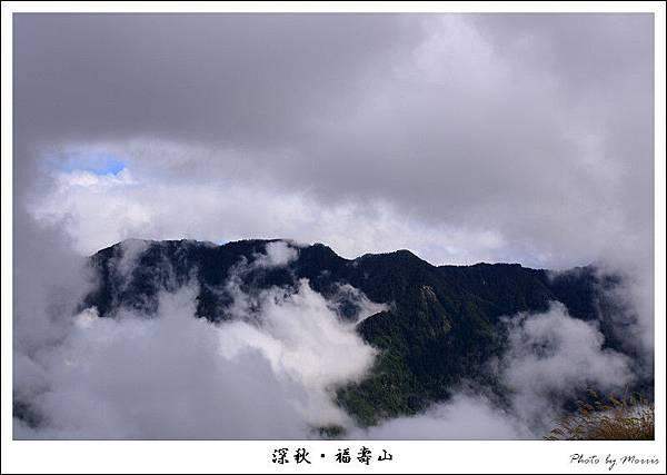 上山途中 (4).JPG