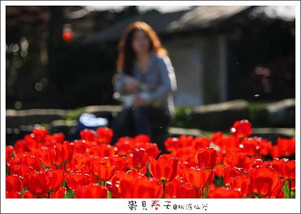 鬱見春天桃源仙谷 (06).JPG