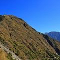登鹿林山、麟趾山 (61).JPG