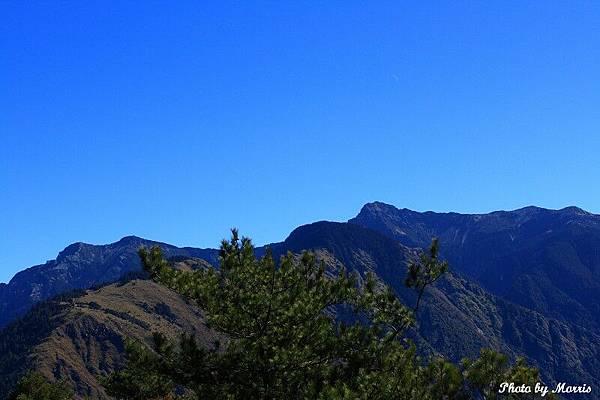 登鹿林山、麟趾山 (16).JPG