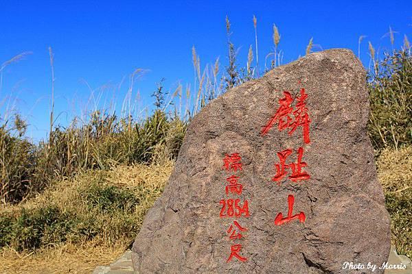 登鹿林山、麟趾山 (48).JPG