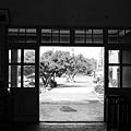 南靖車站 (06).JPG