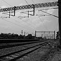 南靖車站 (11).JPG