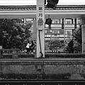 南靖車站 (17).JPG