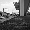 南靖車站 (35).JPG