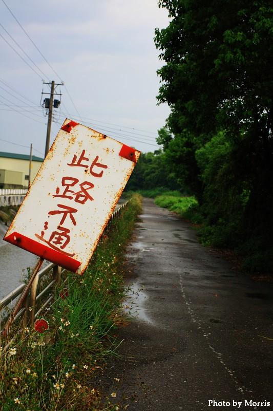 夏日大挑戰 Day 20.JPG