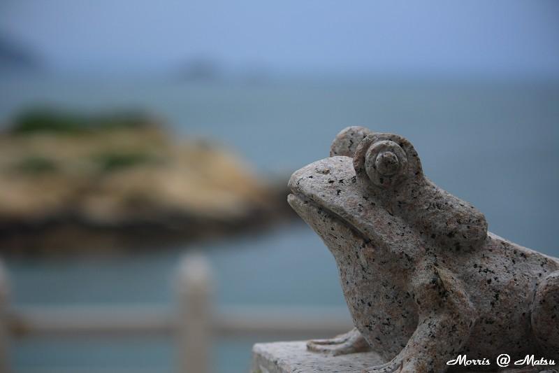 龜島 (34).JPG
