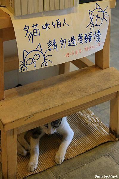 有河book (24).JPG