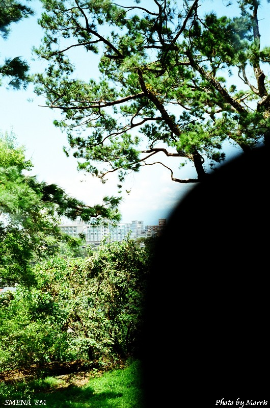 SMENA 8M 卷三 (29).jpg