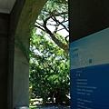 松園別館 (15).JPG