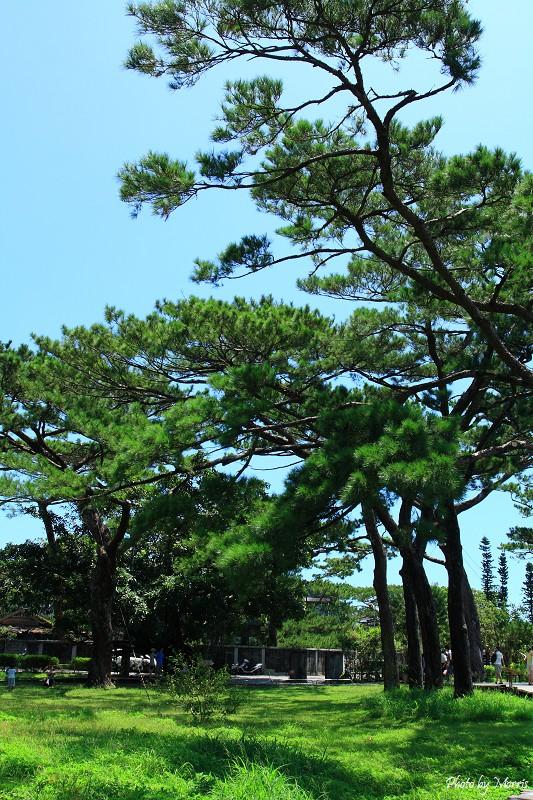 松園別館 (59).JPG