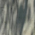 松園別館 (78).JPG